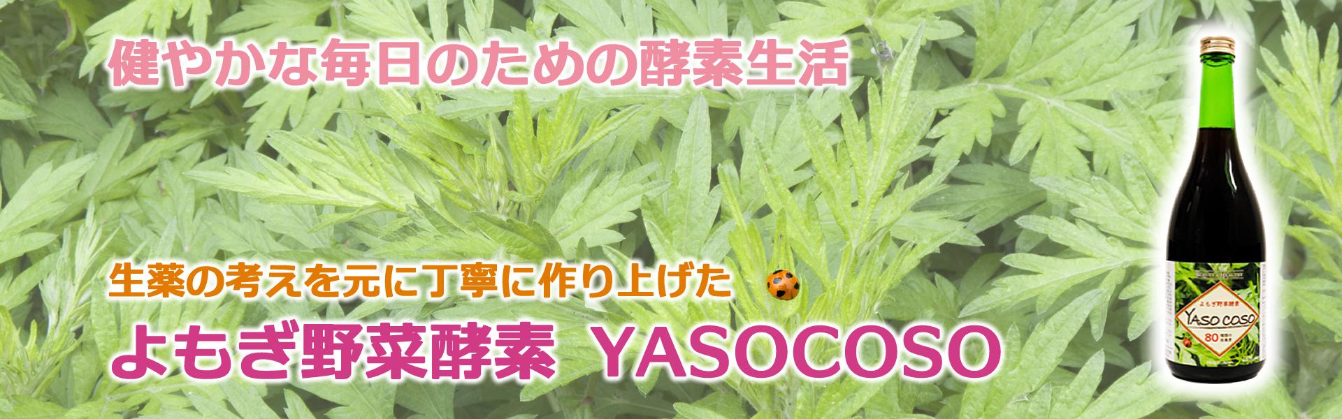 yasocoso-header